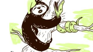 Baixar SLEEPY MR SLOTH | live pictures in my book | Short Stories for Kids