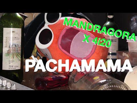 Mandragora x 4i20 - Pachamama 170BPM (Official Music Video)