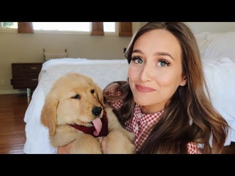 5 PUPPY THINGS I DIDN'T EXPECT