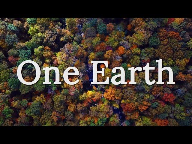 One Earth - Environmental Short Film