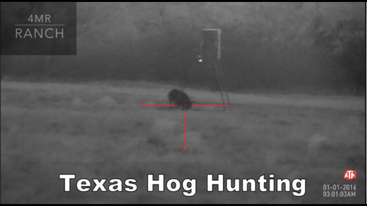 ATN Night Vision Hog Hunting 6/2017