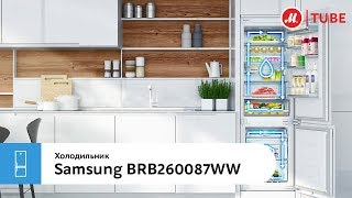 Обзор встраиваемого комби-холодильника Samsung BRB260087WW
