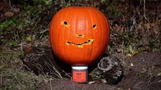 Pumpkin Carving with SloMo