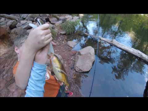 Salmon & Lake Trout Public Shore Fishing from YouTube · High Definition · Duration:  9 minutes 24 seconds  · 36.000+ views · uploaded on 18.11.2014 · uploaded by Eric Haataja