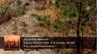 J. Brahms Cello Sonata op 99 - 3 allegro Passionato