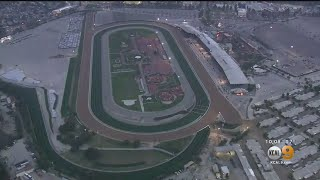 Racing Suspended Indefinitely At Santa Anita Racetrack After 21st Horse Dies