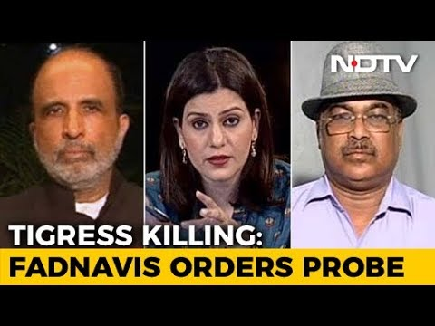 Was The Killing Of Tigress Avni Justified?