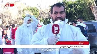 حملة للقضاء على القوارض في درنة   تقرير