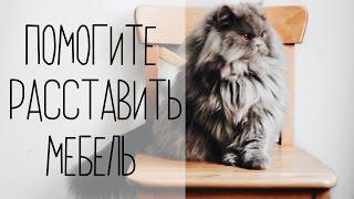 видео Узкий шкаф с пятью полками мод.114