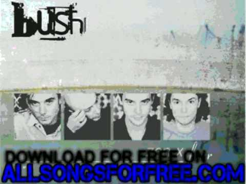 bush-comedown-live-acoustic-zen-x-four-worldvmor