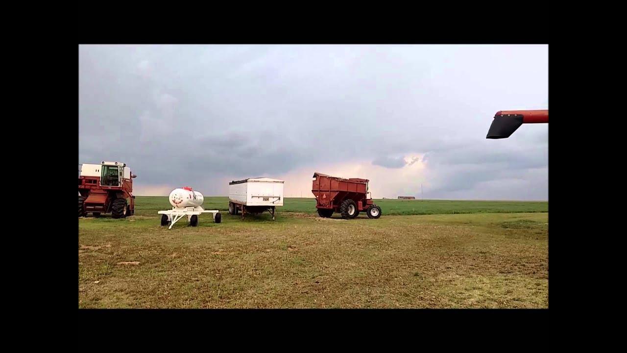 Self Propelled Cart >> International 915 self-propelled grain cart for sale ...