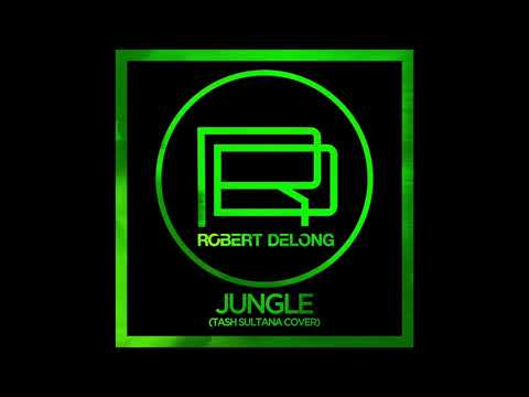 Jungle (Tash Sultana Cover) - Robert DeLong