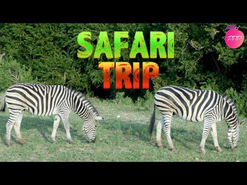 SAFARI TRIP TO AFRICA