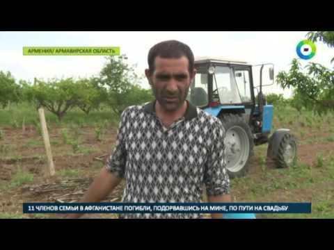 Власти помогают армянским фермерам в покупке сельхозтехники