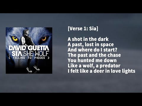 David Guetta ft. Sia - She Wolf KARAOKE