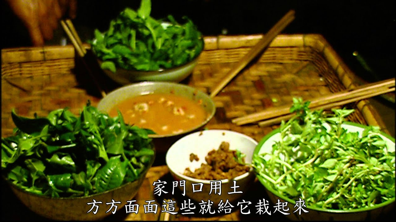 【大陸尋奇#1309】雲南映象(十三) 普洱茶 Pt4/5 - YouTube