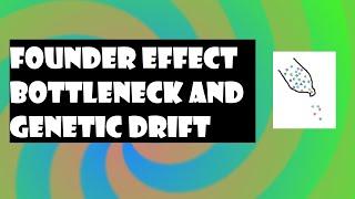 Biology Genetic Drift Bottleneck Effect