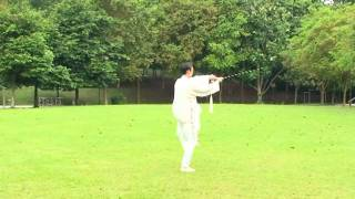 Singapore Tai Chi taiji Wushu classes