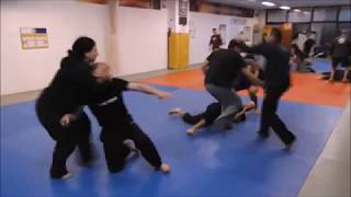 Systema seminar with Kwan Lee