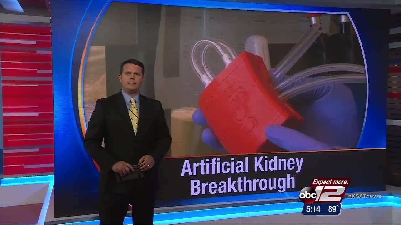 VIDEO: Building an artificial kidney: Medicine's next big thing?