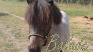 Saphir - balade
