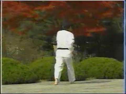 taekwondo poomse 13
