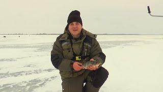 Зимняя рыбалка для начинающих. Первый трофейный окунь!