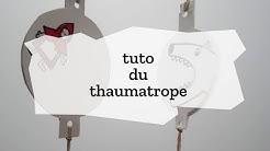 Tutoriel du thaumatrope