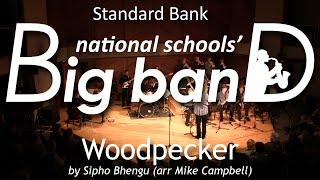 Woodpecker | SBNSBB 2014