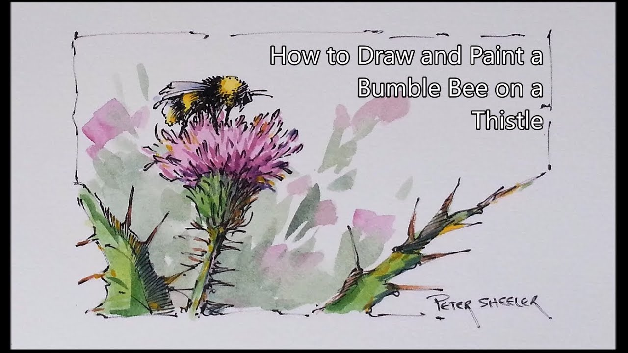 Line And Wash Watercolor Lesson Bumble Bee On A Thistle Easy To Follow Peter Sheeler