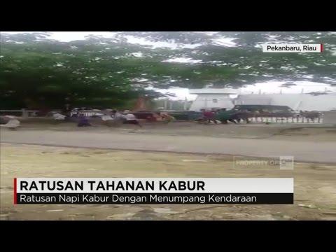 Ratusan Napi di Pekanbaru Kabur, 20 Orang Berhasil Ditangkap