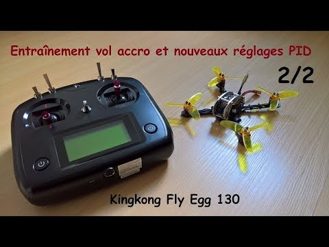 Training accro flight and new PIDs 2/2 (Kingkong Fly Egg 130)