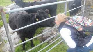 Study Abroad in Ireland at NUI Galway -- Jayme Batcher