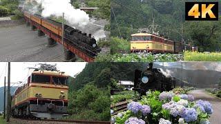 Oigawa railway.May-July,2019./大井川鉄道 2019年5月~7月SL(蒸気機関車)