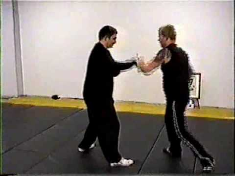 "Xingyiquan Anshenpao ""The Peaceful Body Cannon"""
