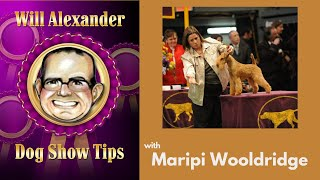 Dog Show Tips  Maripi Wooldridge Interview