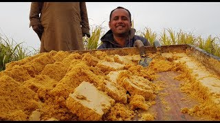 Punjabi Traditional Sweet Dish | Gur Wale Chawal Recipe | Jaggery Rice | Village Food Secrets