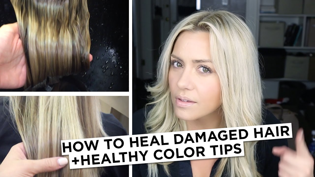 How to Heal Damaged Hair + Healthy Color Tip - YouTube