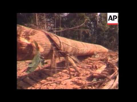 Sarawak: Forests, Brazil - Balbina