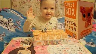 Открываем коробочки Свитбокс Sweetbox c котятами пушистиками