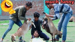 Must Watch New Funny😜😜 Comedy Videos 2019-Episode-49-Funny Vines || RG desi jalwa ||