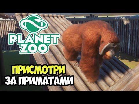 Planet Zoo | Сбережем Мадагаскарских обезьян. Кампания