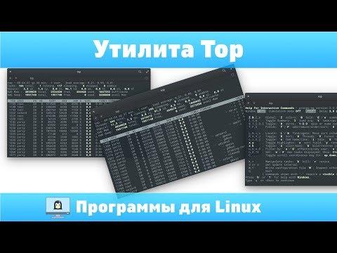 Top - таск менеджер. Программы для Linux