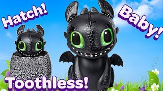 HATCHING TOOTHLESS How to Train Your Dragon The Hidden World Hatching Dragon