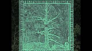 Negură Bunget - Bruiestru [original 2000 version]