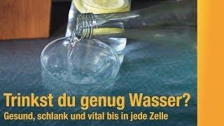 Wie viel Wasser trinken? Bei Sport und im Büro: Die richtige Menge Wasser hält fit, vital und gesund