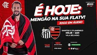 Santos x Flamengo - Brasileirão 2020 Ao Vivo