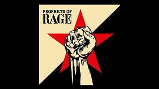 Prophets Of Rage - Legalize Me (Audio)