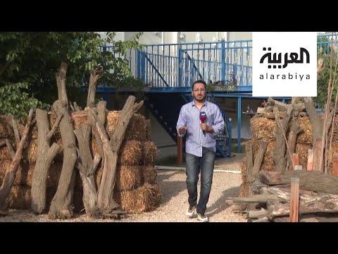 نشرة الرابعة | أسرة سعودية تحول مزرعتها إلى منتجع ريفي بمدينة أبها  - نشر قبل 9 ساعة