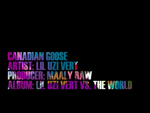 Canadian Goose - Lil Uzi Vert (Lyric Video)